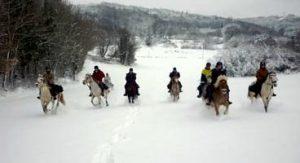 cheval et neige | Destinations Cheval
