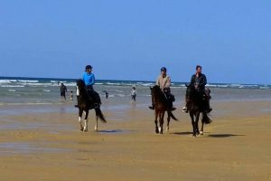 rando landes | destinations cheval