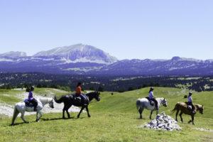 Colonie équitation dans le Vercors, 10-13 ans