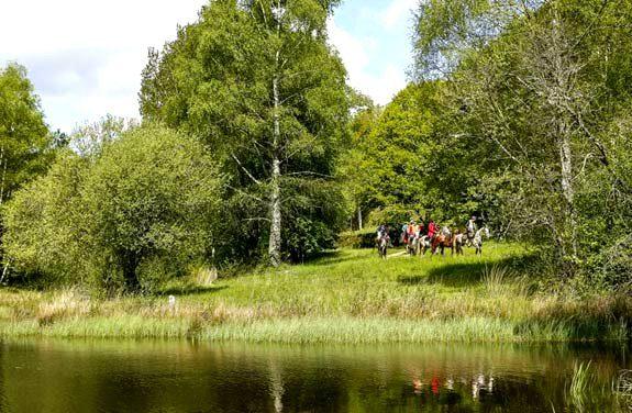 sejour equestre correze | destinations cheval