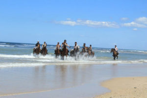 Vacances équitation en Médoc, 12-17 ans