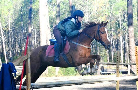 stage equitation adulte landes perfectionnement - Destinations Cheval