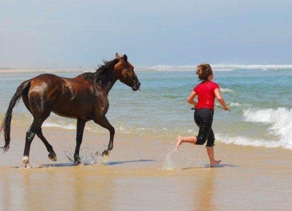 randonnee cheval dans les landes | destinations cheval
