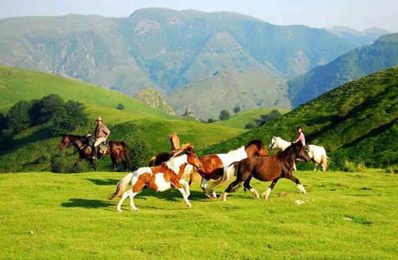 voyage pays basque landes | destinations cheval