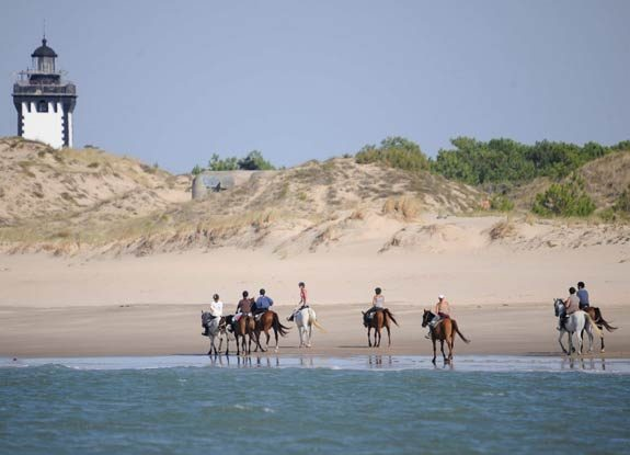 randonnee medoc | destinations cheval