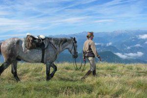 A cheval une rando libre dans les Pyrénées