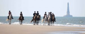 cheval medoc | destinations cheval