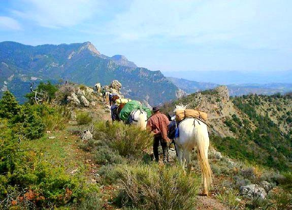 cheval provence | destinations cheval