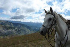 Cheval et nature, les Alpes de Haute Provence
