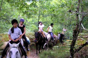colonie equitation correze | destinations cheval