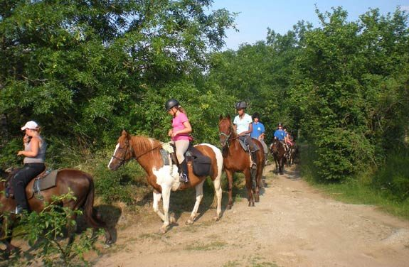 colonie vacances equitation lozere | Destinations Cheval