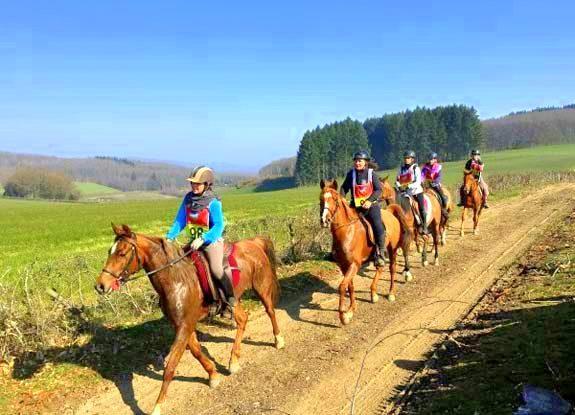 endurance   destinations cheval