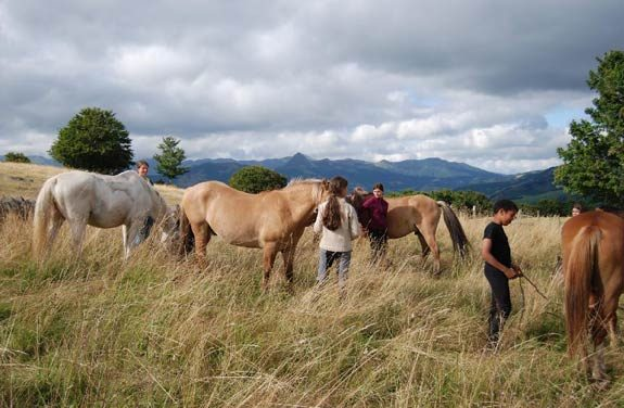 rando cheval auvergne 8-13 ans | Destinations Cheval