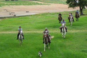 Rando cheval sportive dans le Morvan