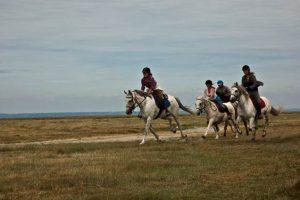 Randonnée à cheval en Normandie 11-13 ans et 14-17 ans