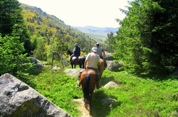 randonnee cheval gevaudan margeride | Destinations Cheval