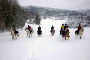 Randonnée à cheval dans le neige, le Jura
