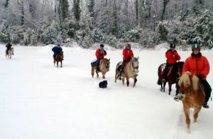 randonnee cheval neige jura | destinations cheval