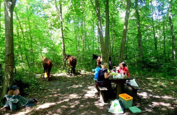 randonnee cheval vexin   Destinations Cheval