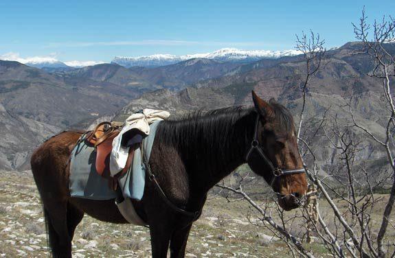 randonne equestre massif monges | destinations cheval