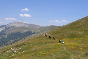 Randonnée équestre le massif des Monges
