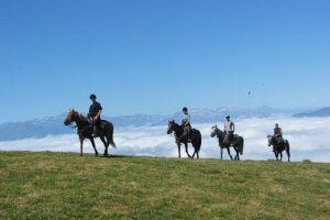 Randonnée équestre, les Pyrénées à perte de vue