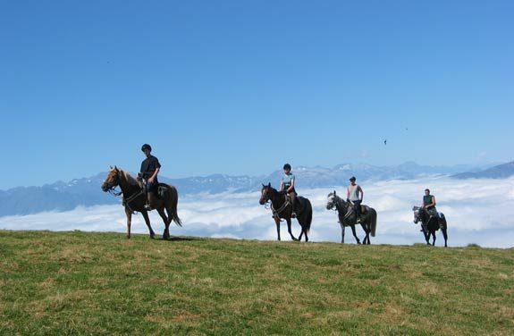 Randonnée équestre, les Pyrénées à perte de vue | Destinations cheval