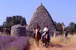 Randonnée équestre et tourisme en Luberon