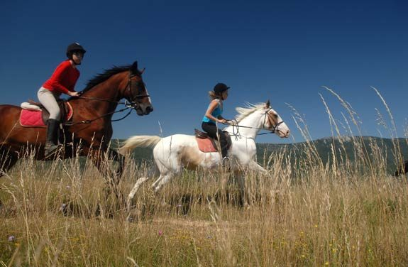 stage equitation ado vercors | destinations cheval