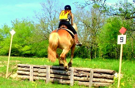 stage equitation trec | Destinations Cheval