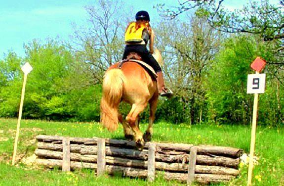 stage equitation trec | Destinations Cheval