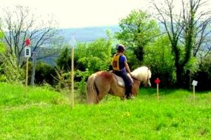 Stage d'équitation TREC dans le Jura