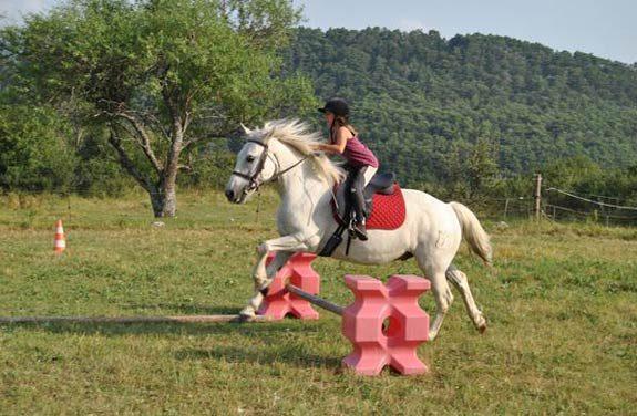 stage equitation var | Destinations Cheval