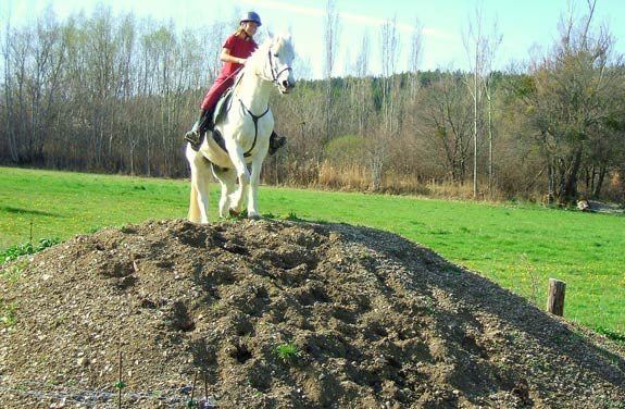 stage initiation equitation randonnee | Destinations Cheval