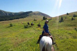 Stage d'initiation à l'équitation et randonnée, Alpes de Haute Provence