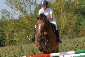Stage de perfectionnement équitation dans l'Yonne 10-16 ans