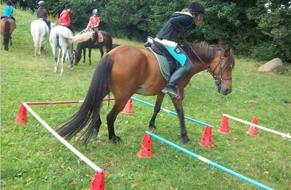 stage poney randonnee bretagne | Destinations Cheval