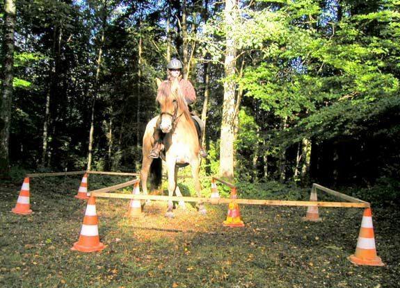 trec   destinations cheval