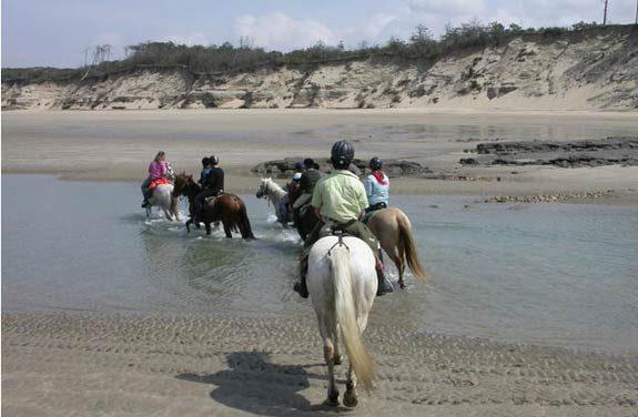 vacances equitation medoc 12-17 ans | Destinations Cheval