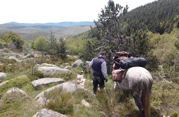 voyage cheval cevennes | Destinations Cheval