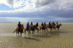 Week end cheval en baie de Somme