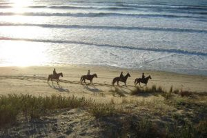 Week end cheval et initiation en Gironde