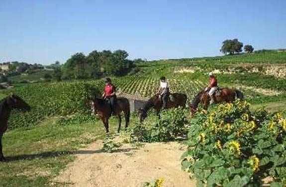 weekend cheval medoc | Destinations Cheval