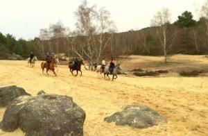 weekend equestre fontainebleau | destinations cheval