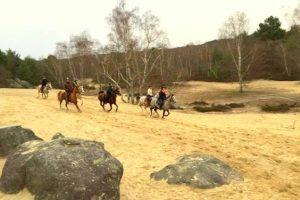 Week end équestre en forêt de Fontainebleau
