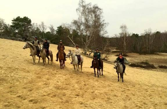 weekend equestre fontainebleau | destinations cheval