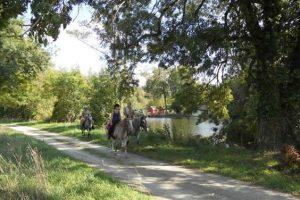 Randonnée à cheval dans la Sarthe
