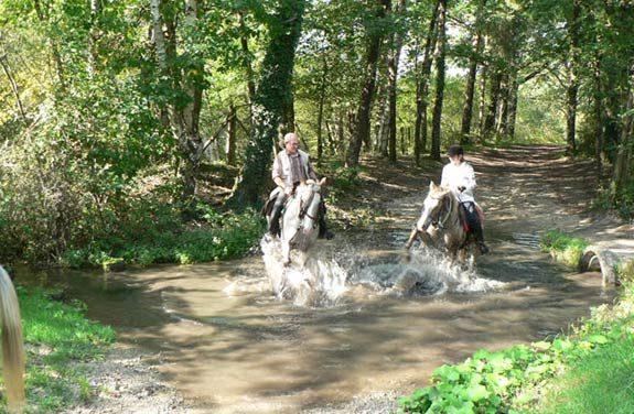 randonnee cheval sarthe