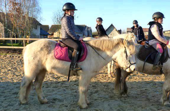 colonie vacances equitation