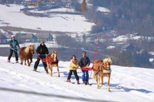 Week-end ski-joering en Savoie